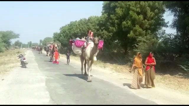 Rajasthani Migrating